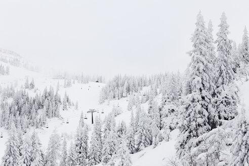Austria, Lower Austria, Mostviertel, View of hochkar ski-region - SIEF000387