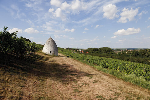 Europe, Germany, Rhine Hesse, View of vineyard with trullo house - CS014667