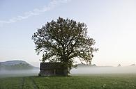 Austria, Salzkammergut, Oberhofen, View of barn in mist - WWF001836