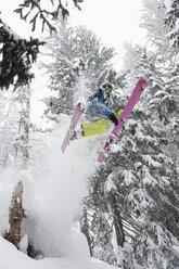 Austria, Kleinwalsertal, Male skier jumping mid-air, low angle view - MRF001276