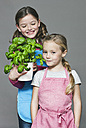 Germany, Cologne, Girls holding basil potted plant - WESTF016339