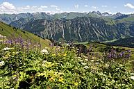 Germany, Bavaria, Schlappoltkopf, View of Allgaeu Alps - UMF000313