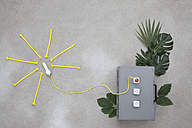 Lightbulb connected to electric sockets with leaves - BAEF000174