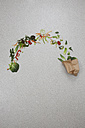 Vegetable spilling from paper bag on gray background - BAEF000180