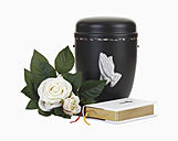 Cremation ash urn, white roses and bible on white background - WBF001088