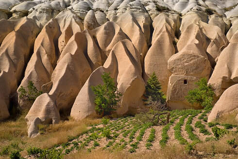 Turkey, Cappadocia, Goreme, View of rose valley - PSF000542