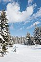 Germany, Bavaria, Aschermoos, Senior woman doing cross-country skiing - MIRF000105