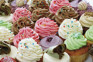 Close up of variety of buttercream cupcakes against white background - CSF014944