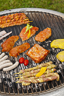 Germany, Bavaria, Close up of skewers and variety of meats on grill - TSF000273