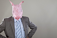 Close up of businessman with pigs head in office against grey background - MAEF003472