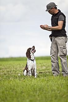 Germany, Lower Bavaria, Man training English Springer Spaniel in grass field - MAEF003530