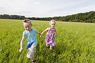 Germany, North Rhine-Westphalia, Hennef, Boy and girl running through meadow - KJF000142