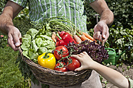 Germany, Bavaria, Altenthann, Father and daughter holding basket full of vegetables - RBF000711