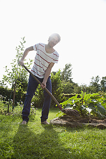 Germany, Hamburg, Man gardening in allotment garden - DBF000175