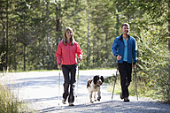 Germany, Bavaria, Couple having nordic walk with english springer spaniel - MAEF003867