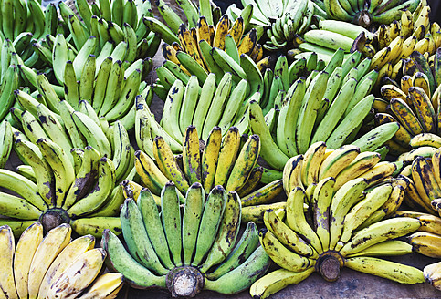 Indonesia, Bali Island, Denpasar, Bananas in fruit stall at market - WVF000185