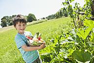Germany, Bavaria, Boy holding vegetables in garden, smiling, portrait - WESTF017716