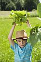 Germany, Bavaria, Boy in garden holding vegetables, smiling, portrait - WESTF017722