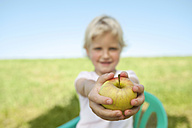 Germany, Bavaria, Girl holding apple fruit in grass meadow, smiling, portrait - RNF000739