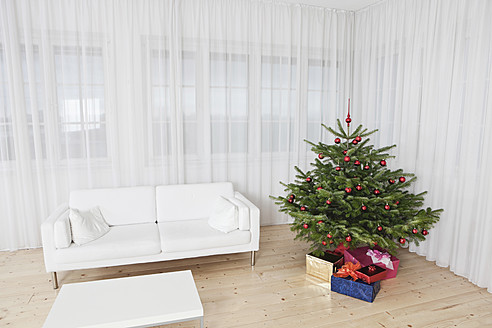 Germany, Munich, Room with christmas tree and couch - SKF000624