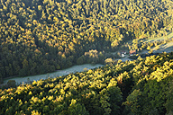 Germany, Bavaria, Franconia, Upper Franconia, Franconian Switzerland, View of flowing water between forest - SIEF002031