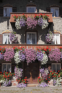 Germany, Bavaria, Upper Bavaria, Chiemgau, Marquartstein, View of house covered with petunia and cranesbill - SIEF002049