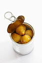 Preserved fig in tin can on white background - CSF015528