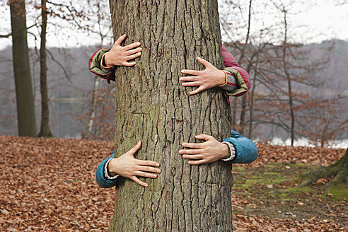 Germany, Berlin, Wandlitz, Couple hugging tree - WESTF018253