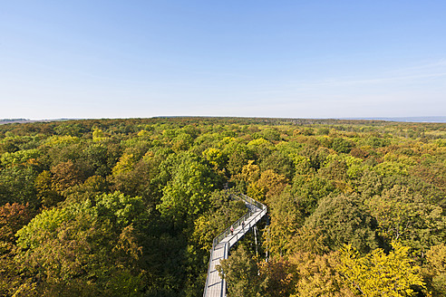 Germany, Thuringia, Hainich, View of Hainich National Park - WDF001132