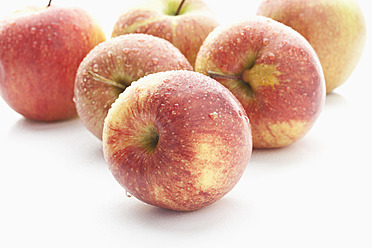 Wet red apples on white background - MAEF004154