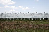 Netherlands, Zeeland, View of glass house - ANB000038