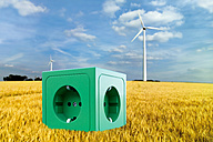 Green socket on wheat field in front of windmill - CSF015769
