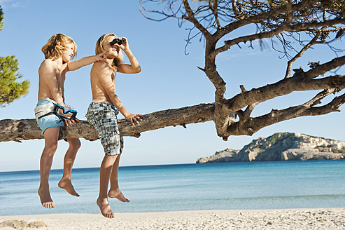 Spain, Mallorca, Children sitting on tree - MFPF000074