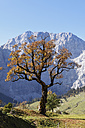 Austria, Tyrol, View of Karwendel Mountains in autumn - SIEF002323