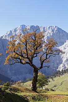 Austria, Tyrol, View of Karwendel Mountains in autumn - SIEF002323