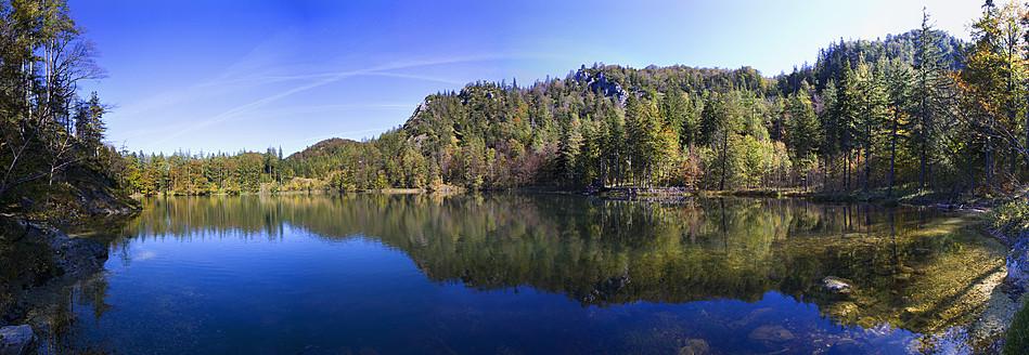 Austria, View of lake with trees - WWF002006