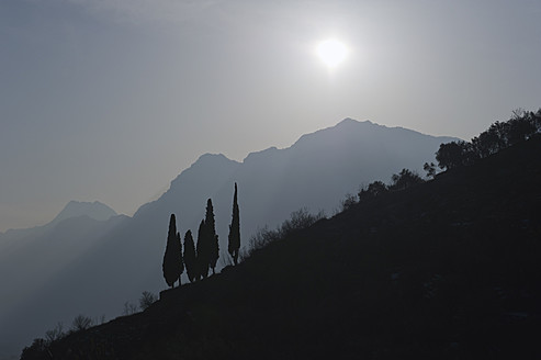 Italy, View of dark hill side with tree - MIRF000389
