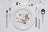 Euro bills in plate - TLF000651