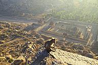 India, Karnataka, Monkey sitting on rock, soolai bazaar in Hampi - MBEF000312