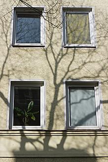 Germany, Bavaria, Munich Westend, Facade with plant at window - LFF000414