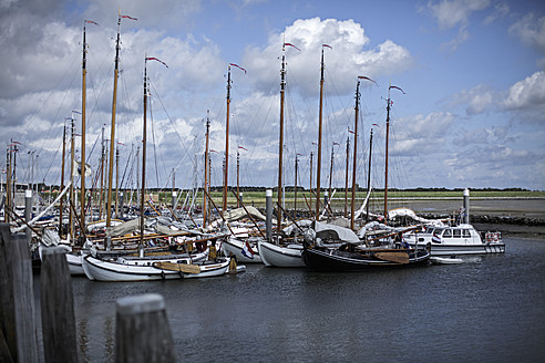 Netherlands, Sail boats moored at dockside - DWF000162