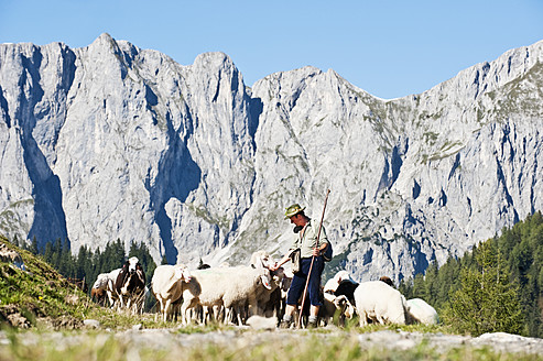Austria, Salzburg County, Shepherd herding sheep on mountain - HHF004117