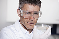 Germany, Bavaria, Munich, Scientist holding liquid in petri dish for medical research in laboratory - RBF000836
