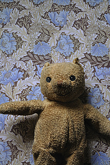 Germany, Bavaria, Old teddy on floral pattern - AXF000065