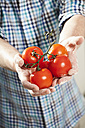 Germany, Berlin, Senior man holding tomatoes - FMKYF000028