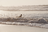 Portugal, Surfer surfing on waves - MIRF000469