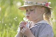 Germany, Bavaria, Girl blowing dandelion seed - TCF002744