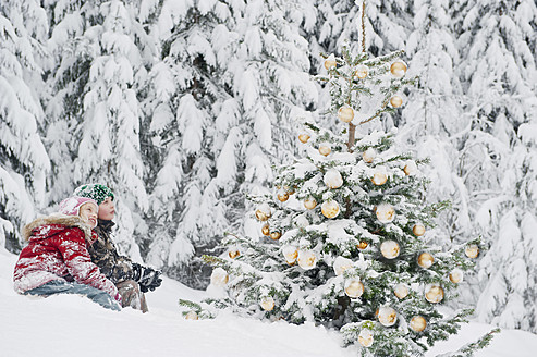 Austria, Salzburg County, Boy and girl watching christmas tree in snow - HHF004252