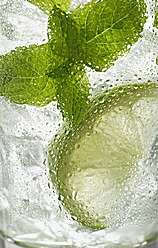Glass of mojito with mint, close up - KSWF000992