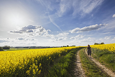 Germany, Bavaria, Mature woman walking through oilseed rape - FOF003920